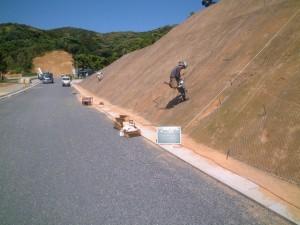 shokusei02